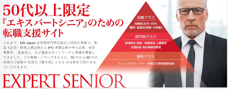 MS-Japan「EXPERT SENIOR」